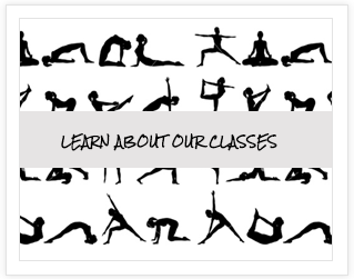 Learn About Our Classes