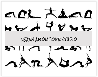 Learn About Our Studio